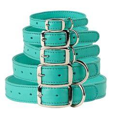 Aqua Leather Dog Collars