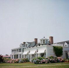 Hydrangeas with classic architecture
