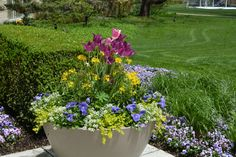 A container garden is awash in colorful flowers outside The Morton Arboretum's Administration Building.