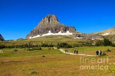 Enjoying Logan Pass Summit:  See more images at http://robert-bales.artistwebsites.com/