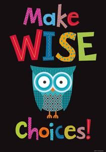 Make Wise Choices! Poster classroom owls, idea, owl themed classroom, make good choices, making good choices, owls for classroom, motivational posters, owl themes for classroom, wise choic