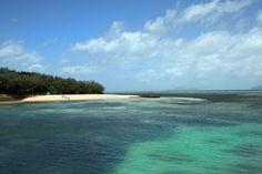 Visit Green Island #travel #australia