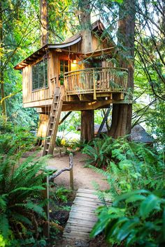 The Coziest Treehouse You'll Ever See