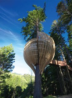 The Yellow Tree House Restaurant in New Zealand