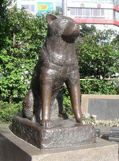 (Hachiko Statue), Yokohama, Shibuya Station