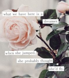 dream big, pink roses, the virgin suicides, pale pink, the dreamers, a tattoo, love quotes, vintage style, girls life