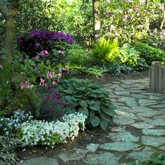 flagstone path, shady garden, best landscaping plants, garden pathways, stone paths, outdoor plants and flowers, fence plants, plants for japanese garden, shade plants