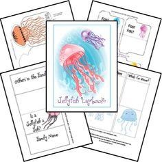 Jellyfish Animal Study & Lapbook