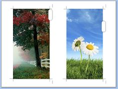 DIY photo dividers, use any picture!