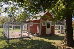 Homestead Revival: Chicken Coop Inspiration