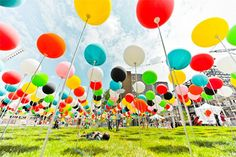 fill your entire lawn with balloons and watch the kids wander through the colorful world you created for them.