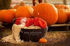 Photo Prop Pumpkin Hat and Cocoon, Newborn knit pumpkin photo Prop,Pumpkin set, Pumpkin cocoon, Thanksgiving, Pumpkin photo prop set on Etsy, $38.00
