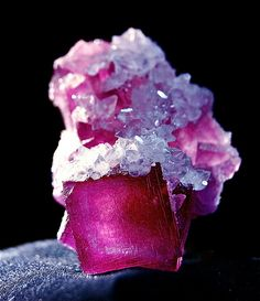 """Cranberry Fluorite crystals  covered with Calcite crystals, Anhui Province, China, 1"""" /  Mineral Friends <3"""