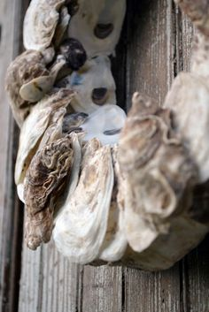 oyster shell wreath, cool.