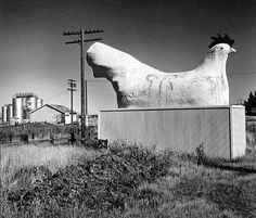 john gutmann - monument to the chicken, petaluma ca