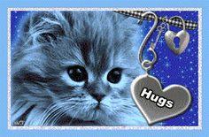 kitten glitter graphics - Google Search