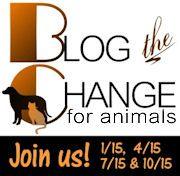 Blog the Change