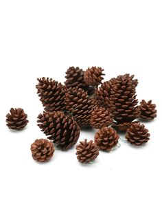 Balsam Hill - Big Pinecones Kit - Christmas Decorations and Ornaments for Your Artificial Christmas Tree