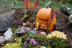 Fairy Village (Live Oak Waldorf School)