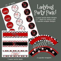 Ladybug Party Pack