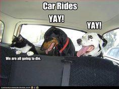 Car ride #drive