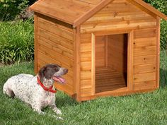 A great guide with multiple links for designs, material lists and instructions for building a dog house!