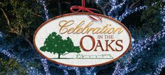 Christmas Lights in he Oaks