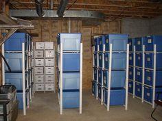 Organized basement storage