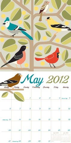 Beautiful Birds, May 2012