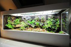 Betonplex terrarium - Gifkikkerportaal - Forum - Overige - Techniek