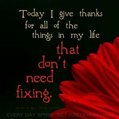 TODAY I GIVE THANKS FOR ALL OF THE THINGS IN MY LIFE THAT DON'T NEED FIXING.