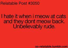 so rude right!?