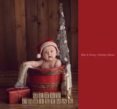 Holiday sessions with Milk Honey Photography