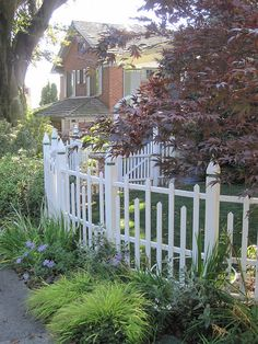 white picket fences, curved fence, curved fencing, hous, garden landscaping