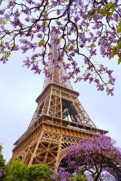 dream big, eiffel tower, france travel, pari, purple flowers, amaz, beauti, beauty, place