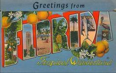 Greetings From Postcards Vintage | Vintage Postcards
