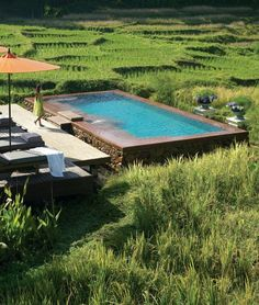 Romance comes easily among the rice paddies at @Four Seasons Resort Chiang Mai. Go on, take a dip.