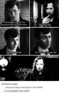 James and Sirius meet again in the afterlife.