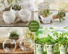 plant wedding favors #wedding #favor #ideas