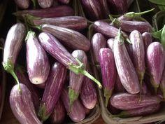 Little stripe eggplant
