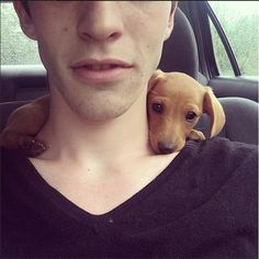 this is a favorite past time of little dachshunds weenie dogs, little puppies, dachshund, doxie dogs, wiener dogs