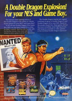 Double Dragon Nintendo  NES and Game ad