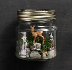{Tiny Terrarium Kit} via RestorationHardware.com - love this!