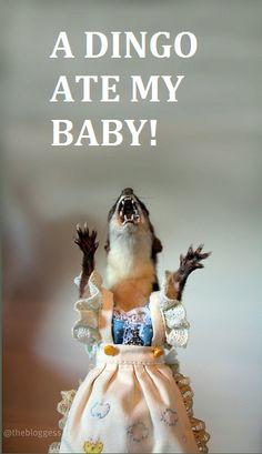 A dingo ate my baby!