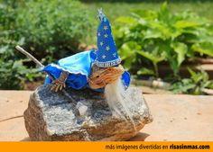 El lagarto Merlin.