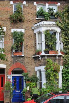 Extreme window box gardening!