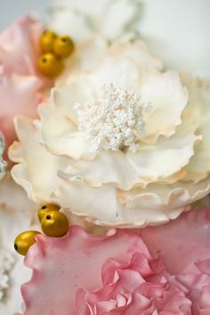 Open white peony with a little gold