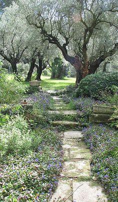 Beautiful Path in Provence