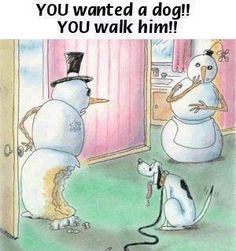 walk the dog funny quotes quote lol funny quote funny quotes humor snowmen