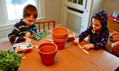 Hold a bean plant race. Plant bean seeds in pots and see which grows fastest (i.e. germinates first, grows tallest, flowers first, etc.).